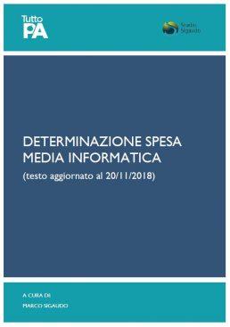 determinazione spesa media informatica